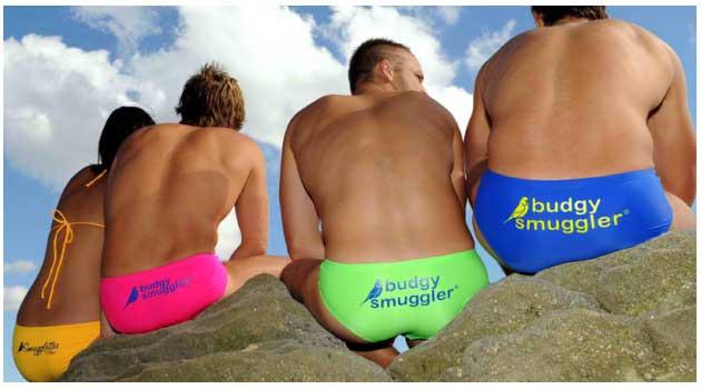 budgy smuggler swimwear australia