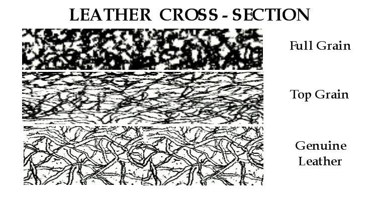 Leather Cross Section_edit