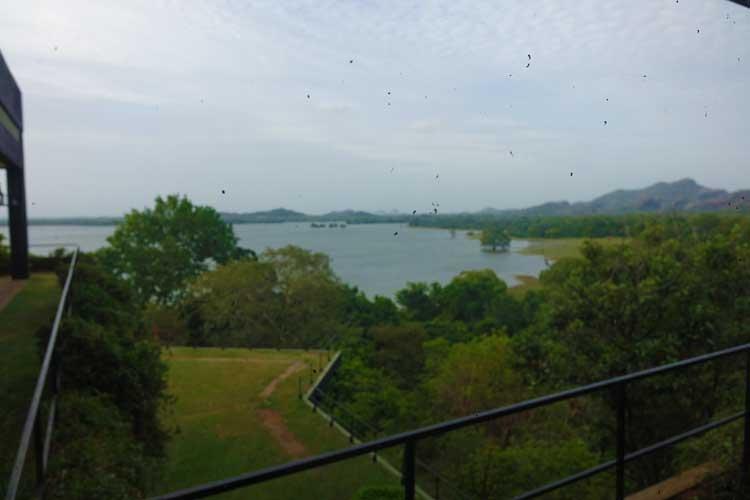heritance Kandalama hotel review Sri Lanka - Gradens lake