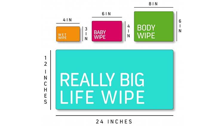 Life Wipes (12)