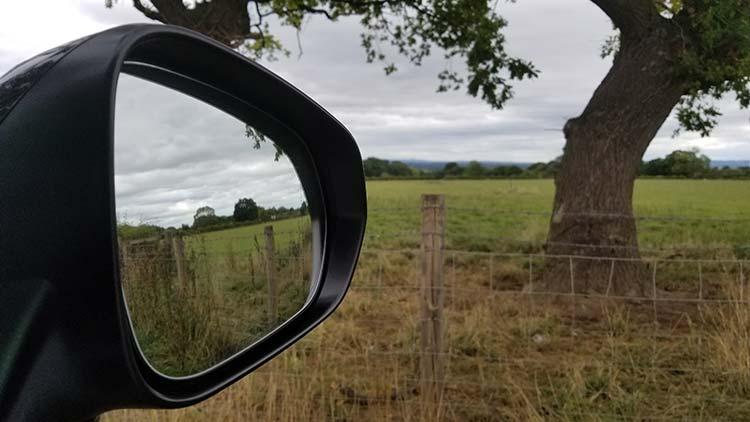 RX450h Hybrid F Sport mirror