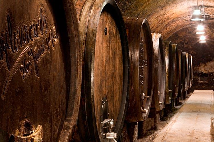 Domäne-Wachau-Wine-Cellar-courtesy-of-Domäne-Wachau