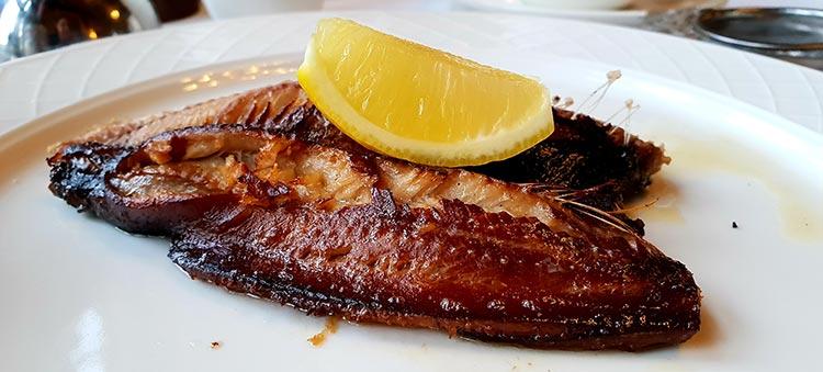 Mackeral Fish