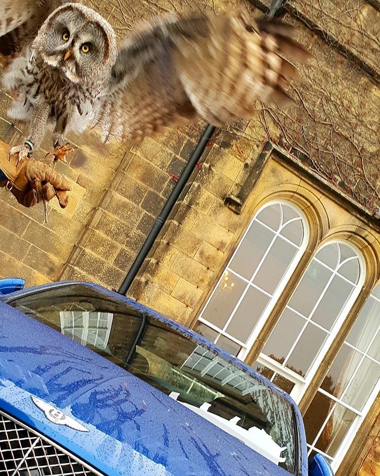 Bentley GT Continental Grand Tourer Heads Up Display